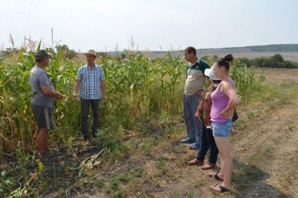 (Română) Peste 50 de fermieri din 7 localități instruiți in domeniul producerii silozului.