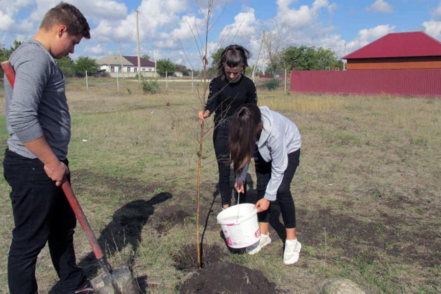 Caravana de plantare a faptelor bune – Gura Căinarului